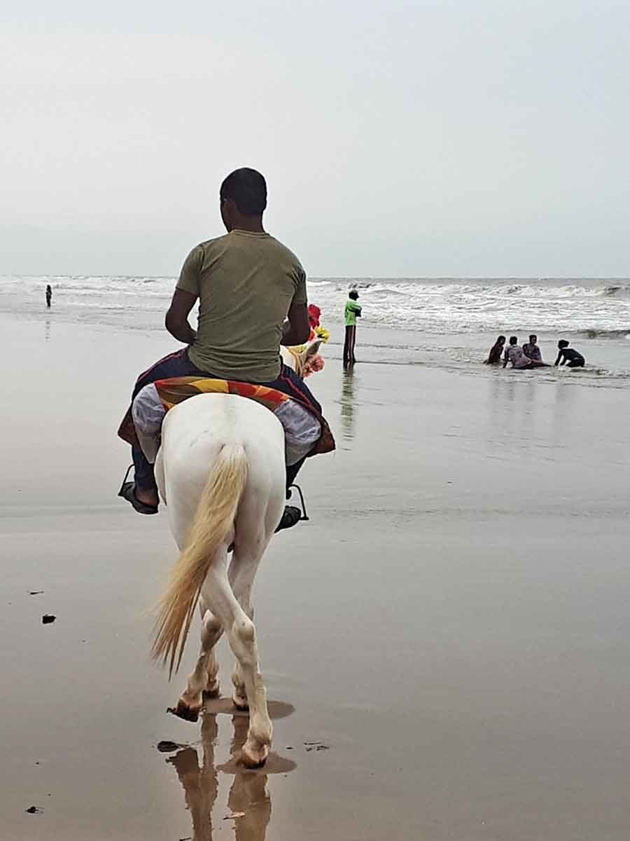 Dawn, Bay of Bengal - Photographs by Gavin Cologne-Brookes