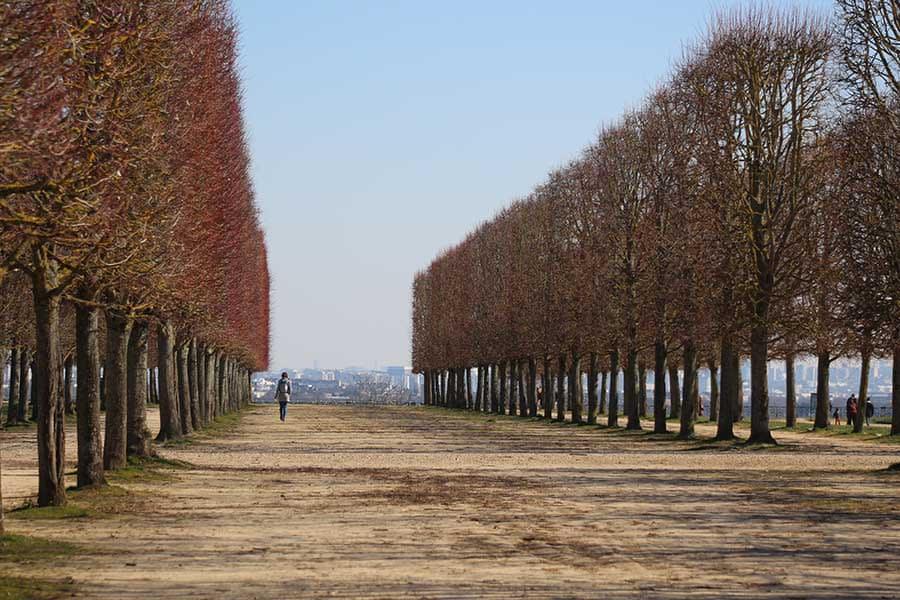 Parc du Château de Saint-Germain-en-Laye - Photographs by Gavin Cologne-Brookes